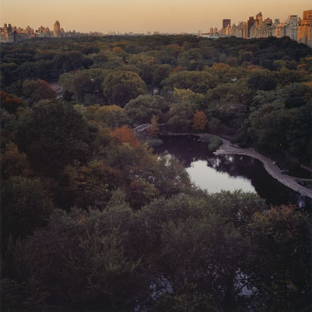 Debra Bloomfield - Central Park #1, New York
