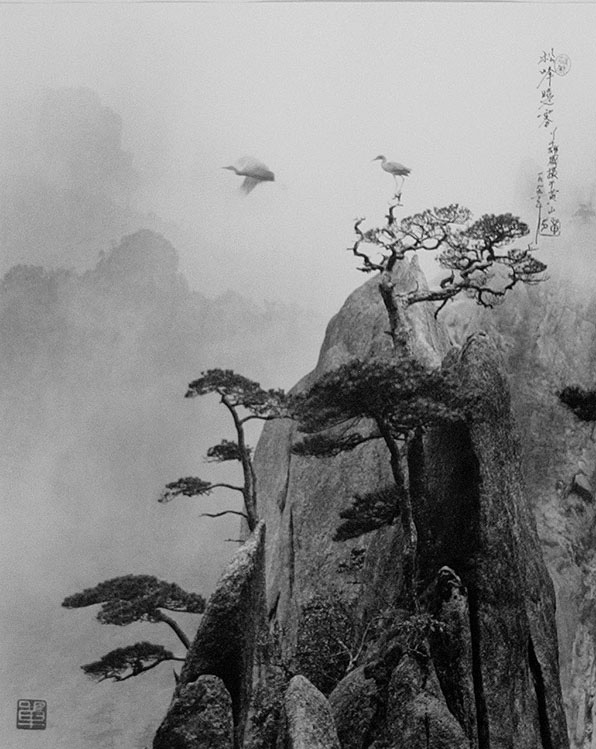 Don Hong-Oai - Freedom, (a.k.a Pine Peak) Huang Shang, China