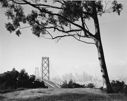 Roger Minick - Bay Bridge from Yerba Buena Island, San Francisco